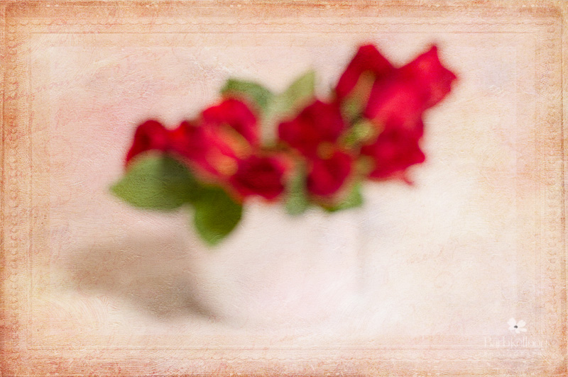 red roses in a white bowl slightly blurred