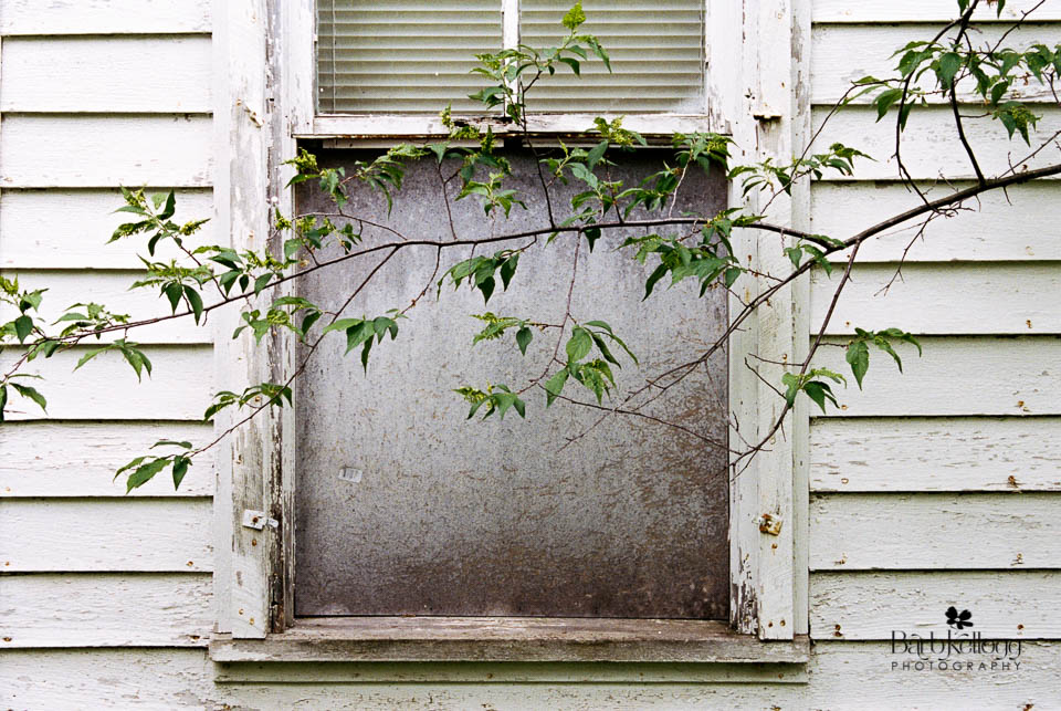 """Blocked Window"", © 2017 Barb Kellogg"