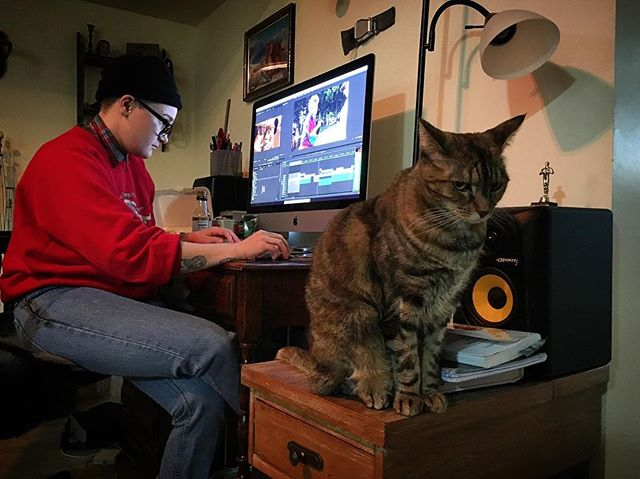 Making magic with our editor @uncle__meg and our purrducer Kook!  #dogcamp #cats #dogs #movies #film #documentary #work #boss