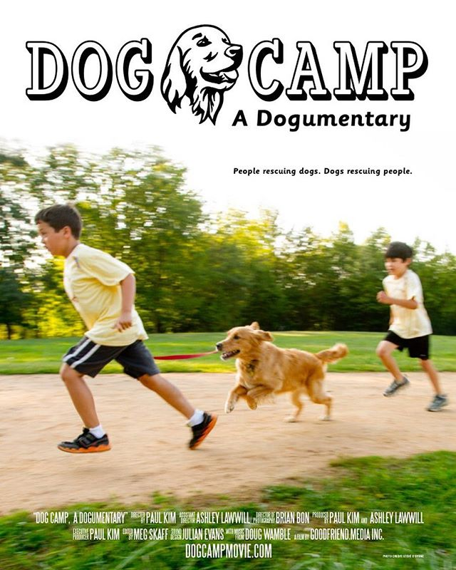 Another sweet poster! Photo by Steve O'Byrne and designed by Kelly Convery!  #documentary #film #movie #dogs #dogsofinstagram #goldens #rescuedog #bark #puppy #fun #goldenretriever