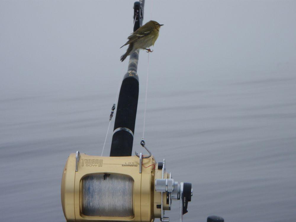 Fishing '11 091.jpg