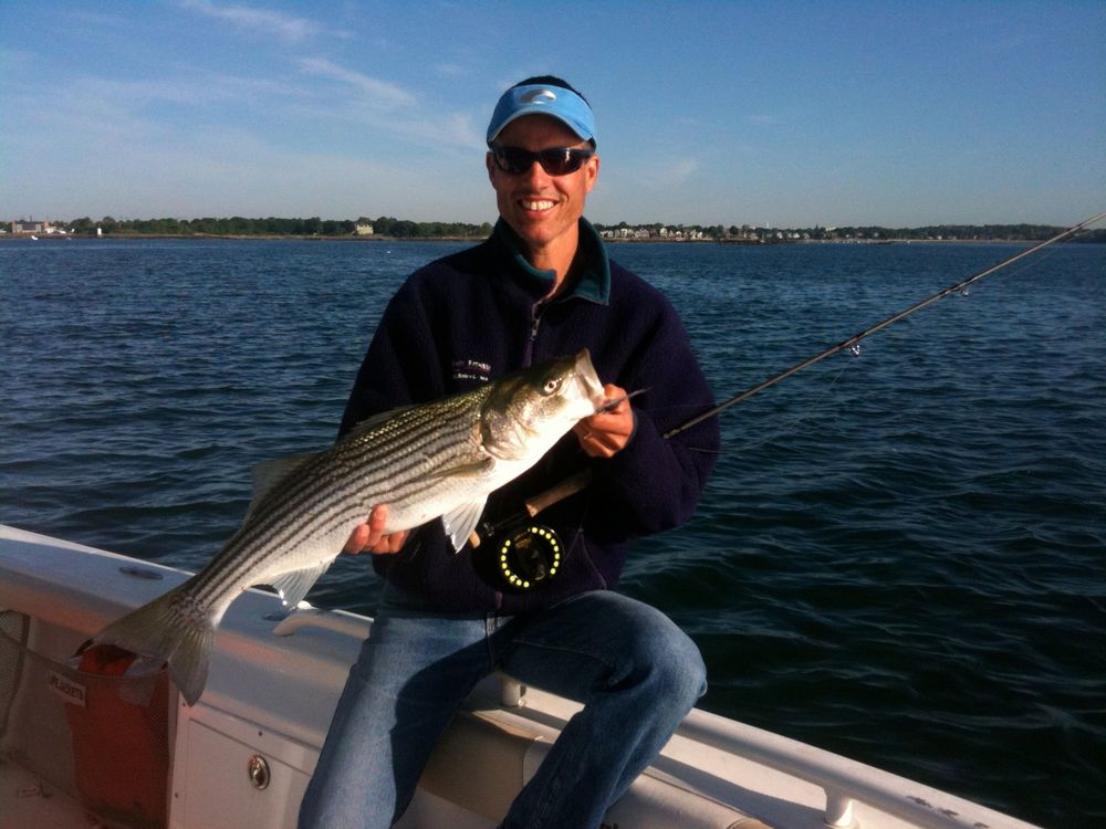 picture of a nice fly rod striped bass near Salem MA