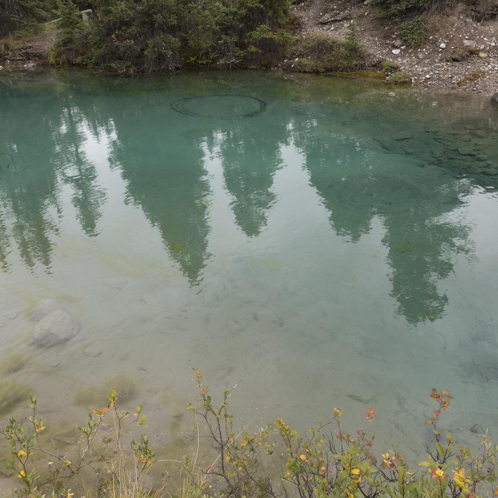 Canada-Rockies-1500px-P1000225.jpg