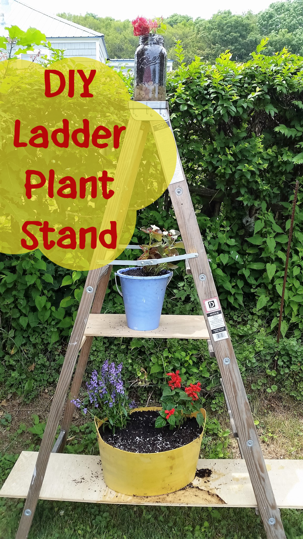 Diy Ladder Plant Stand Whimsy Scribble