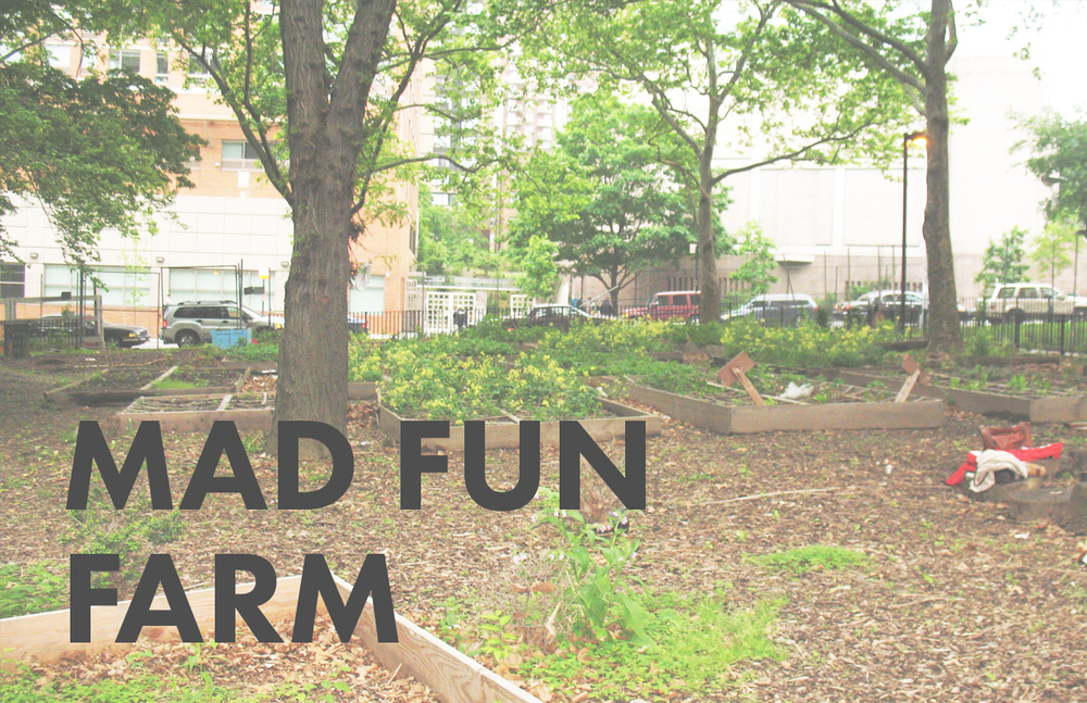 Mad Fun Farm
