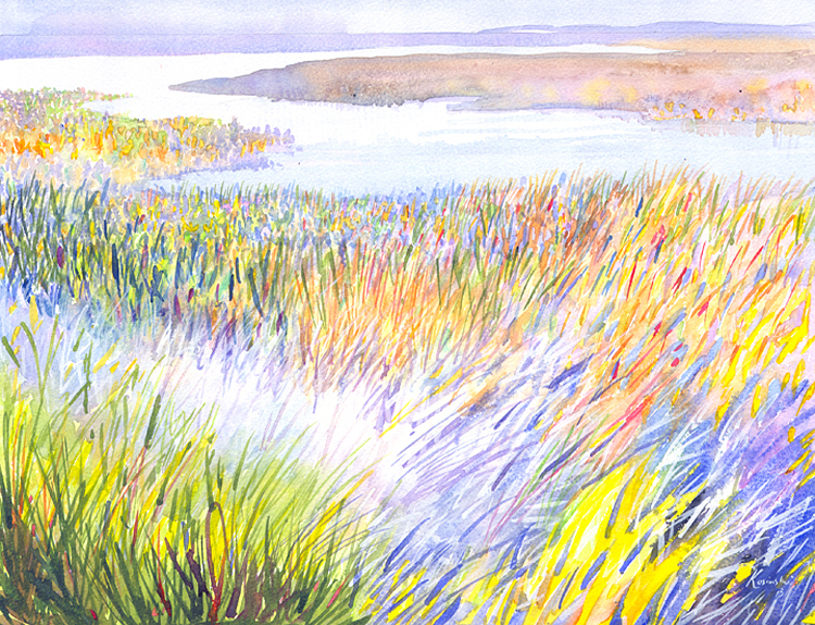 Hobcaw Marshes - (Sold)