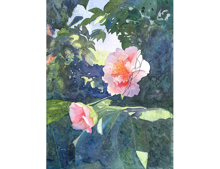 Camellia - (Sold)