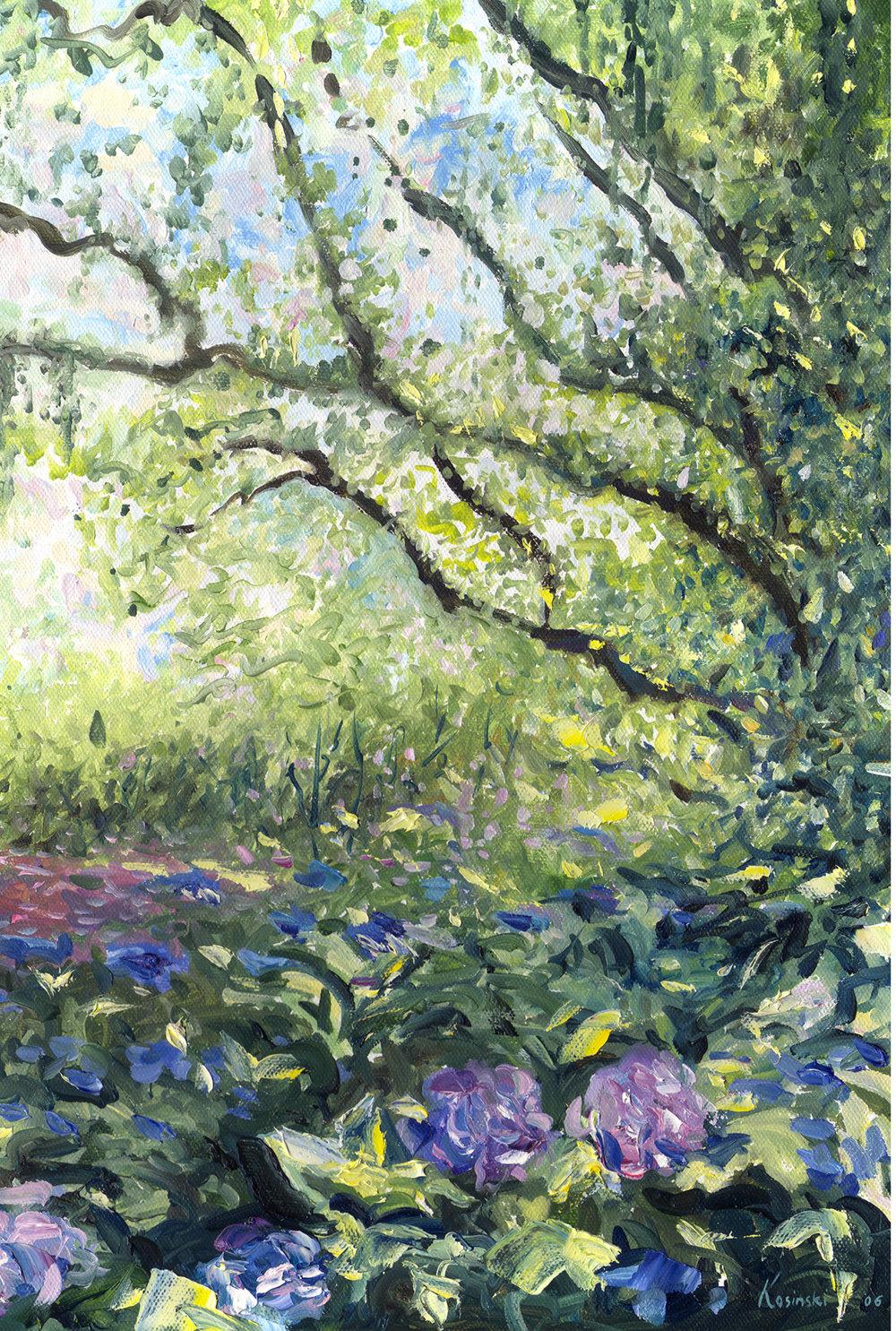 Hydrangeas, Brookgreen Gardens, SC