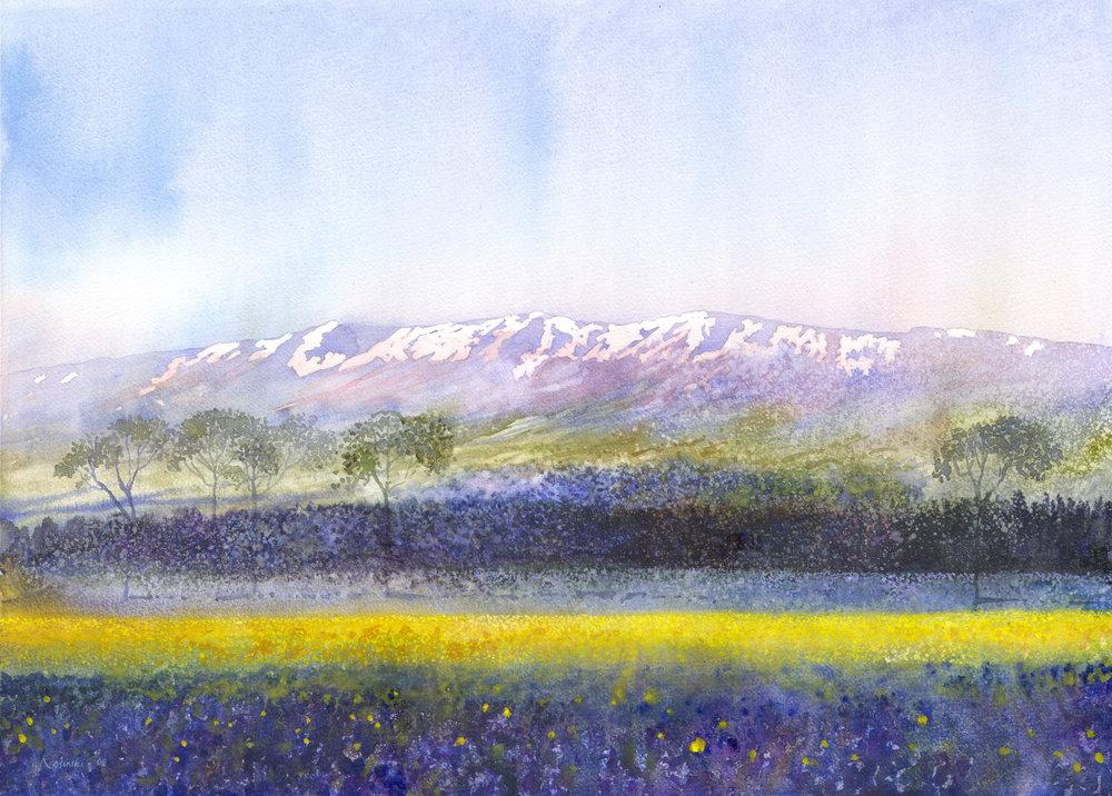 081115-kosinski-mount-lebanon-bekaa-valley.jpg
