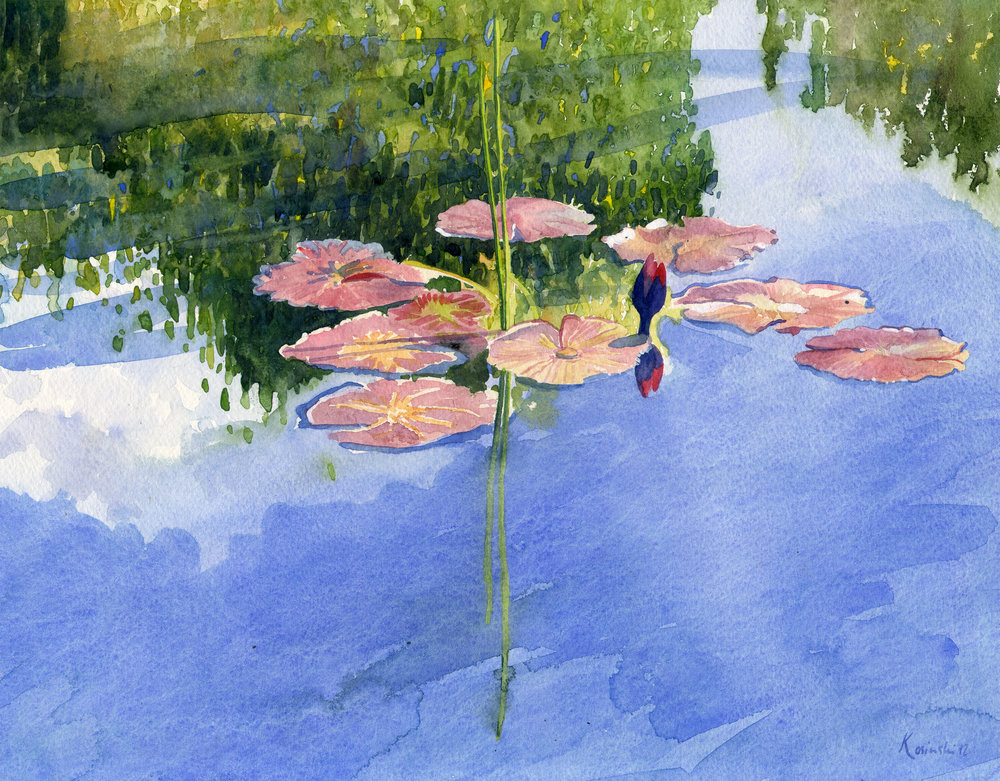 Water Lilies, Brookgreen Gardens