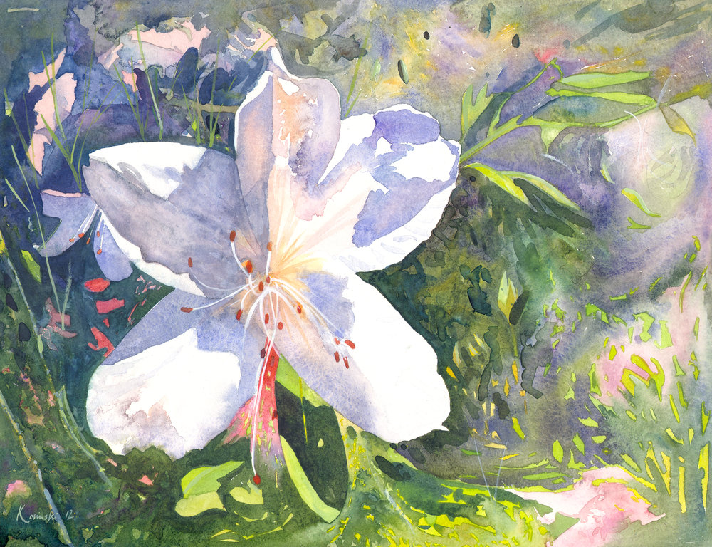 Magnolia, Brookgreen Gardens, SC