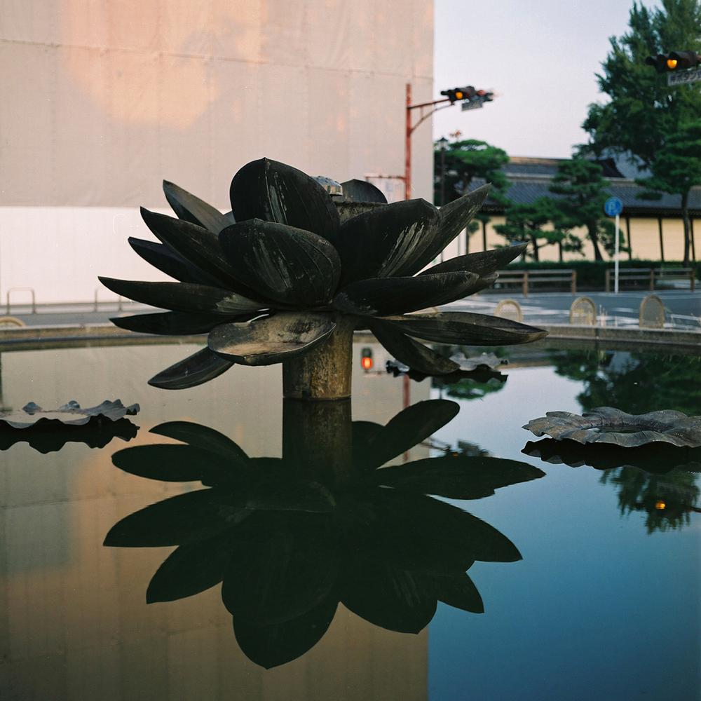 Lotus Fountain, Higashi Honganji, Shimogyo-ku, Kyoto, Japan 2012