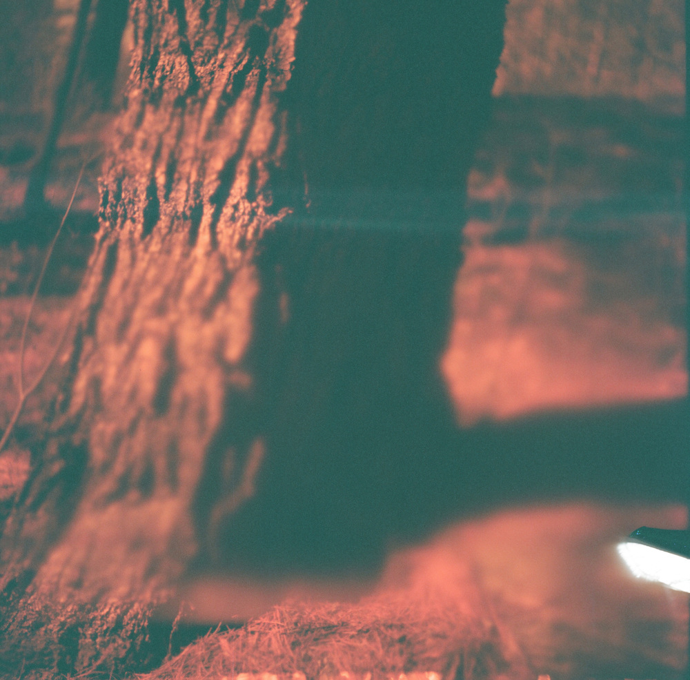 Accidental Redscale (torn negative), Etna, NH, 2014