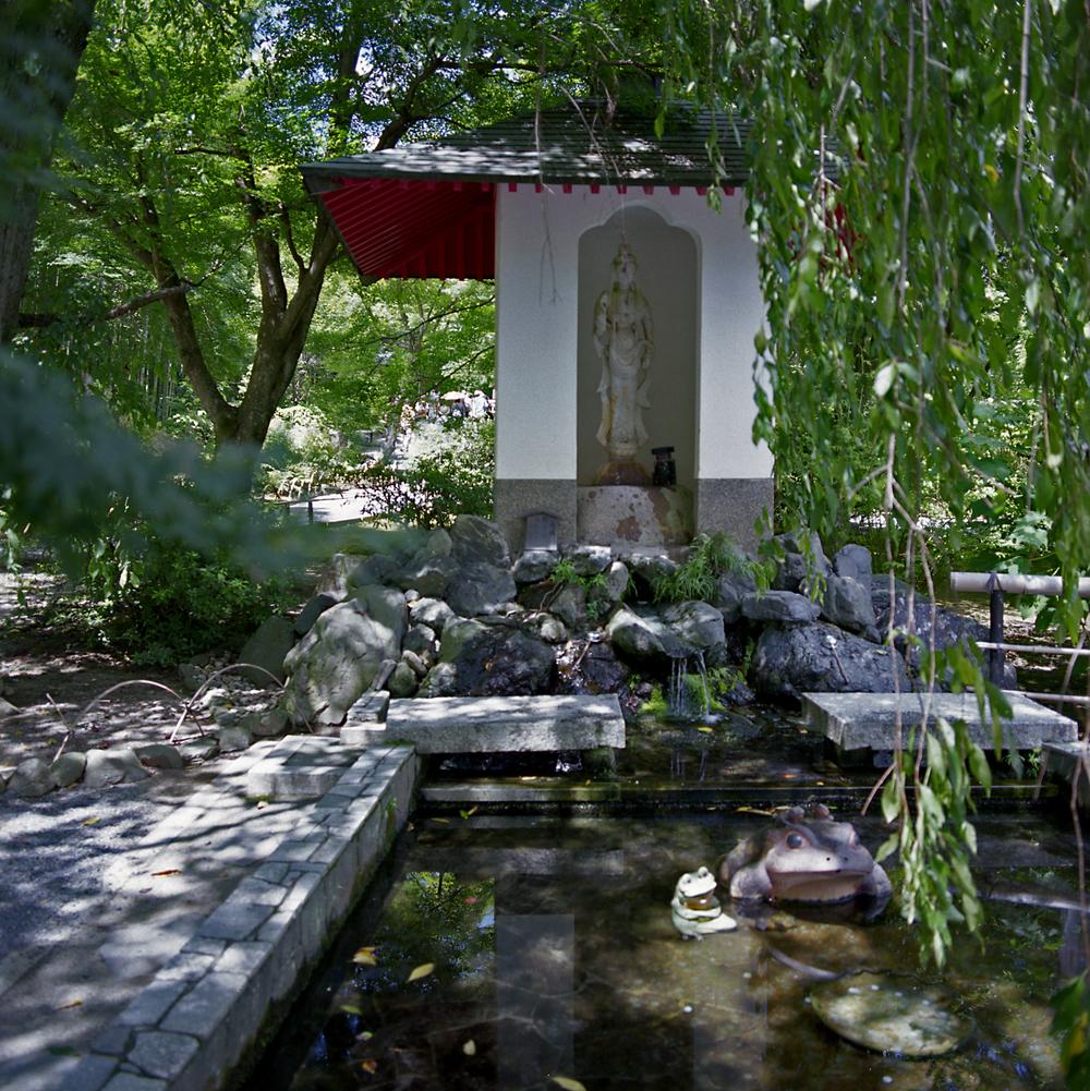 Tenryu-ji, Sagano, Kyoto, Japan, 2012