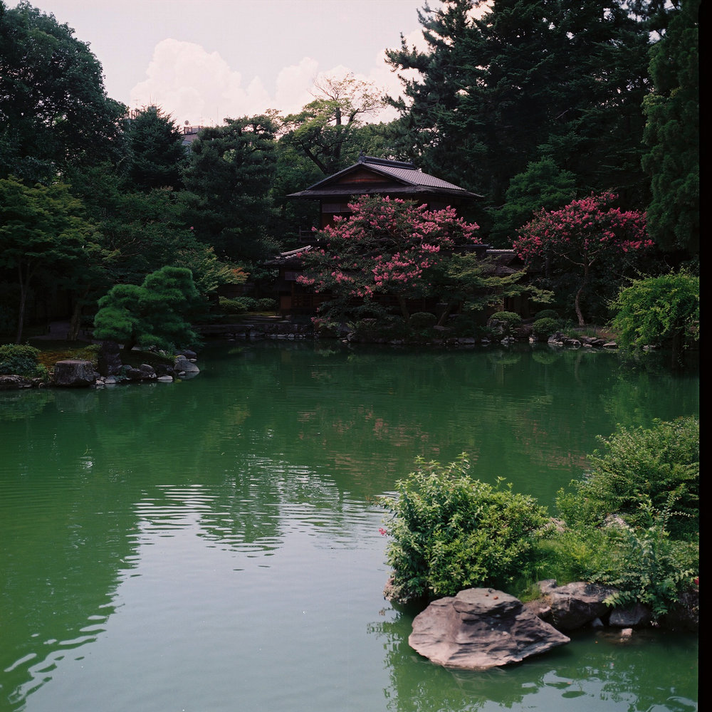 Kyoto Gyoen, Kamigyo-ku, Kyoto, Japan, 2012