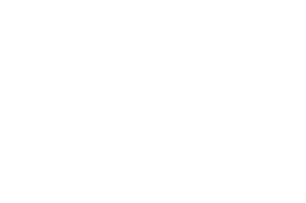 OFFICIAL SELECTION - Grove Film Festival - 2016.png