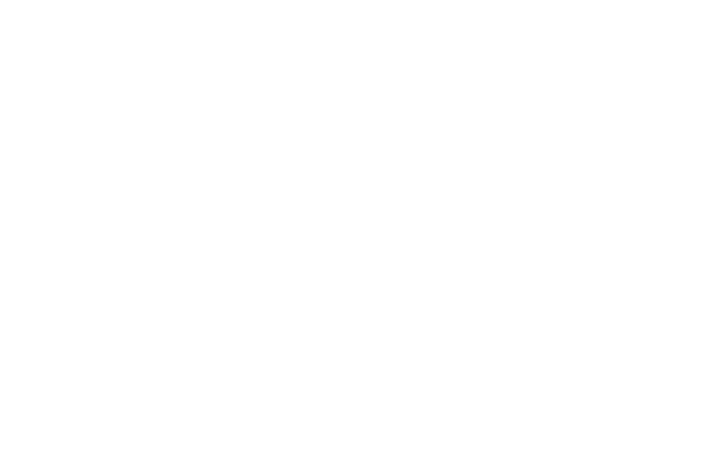 OFFICIAL SELECTION - Requiem Fear Fest - 2016.png