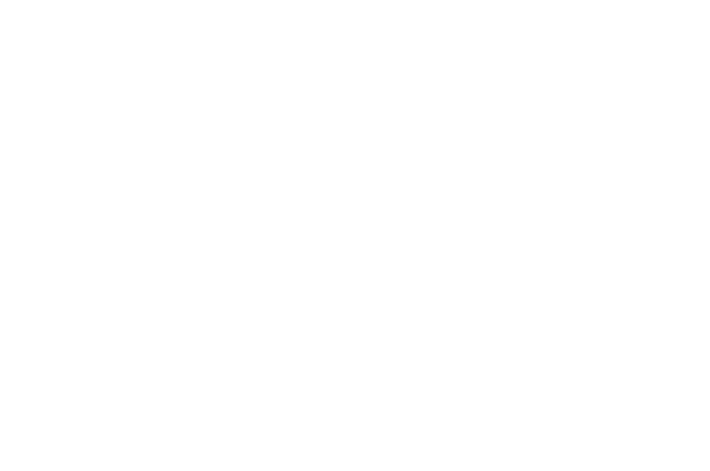 OFFICIAL SELECTION - NORTHEAST FILM FESTIVAL HORROR FEST - 2016.png
