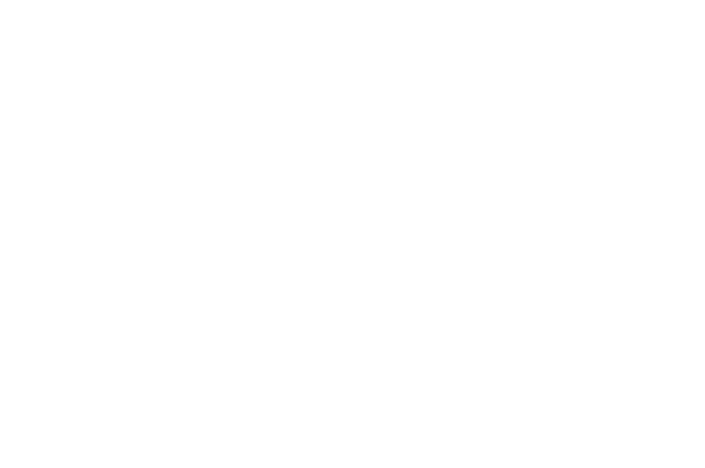 Nominated BEST DIRECTOR - NORTHEAST FILM FESTIVAL HORROR FEST - 2016.png