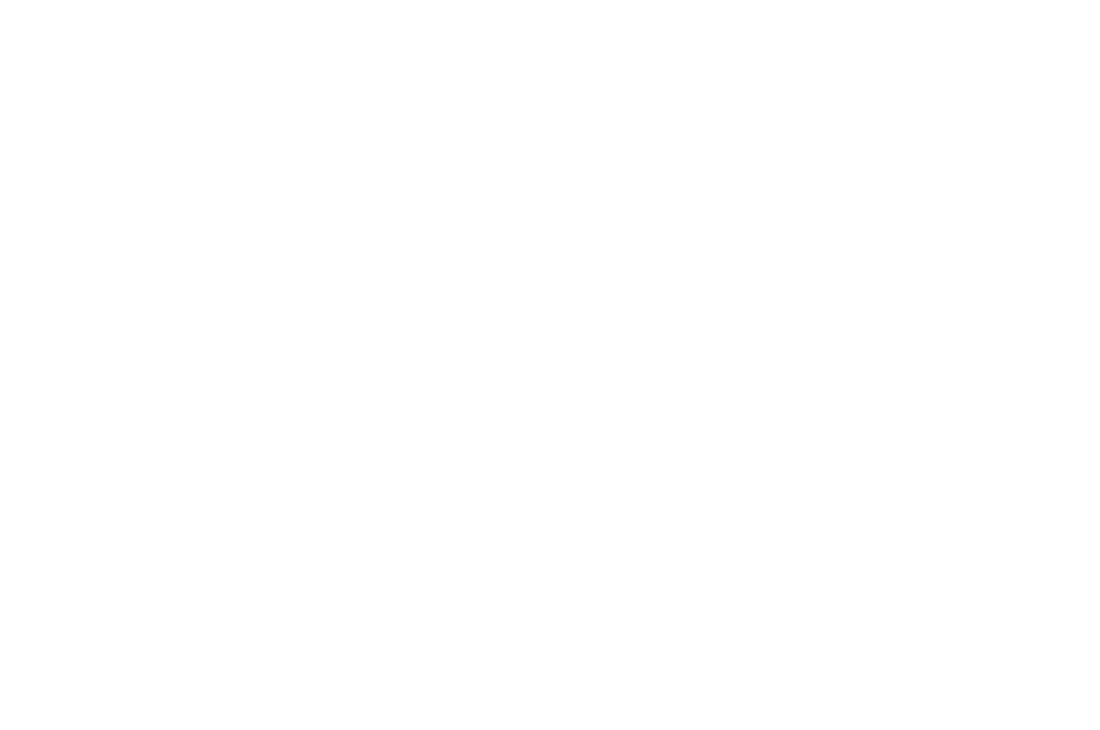 OFFICIAL SELECTION - THE BRIGHTSIDE TAVERN SHORTS FEST - 2017.png