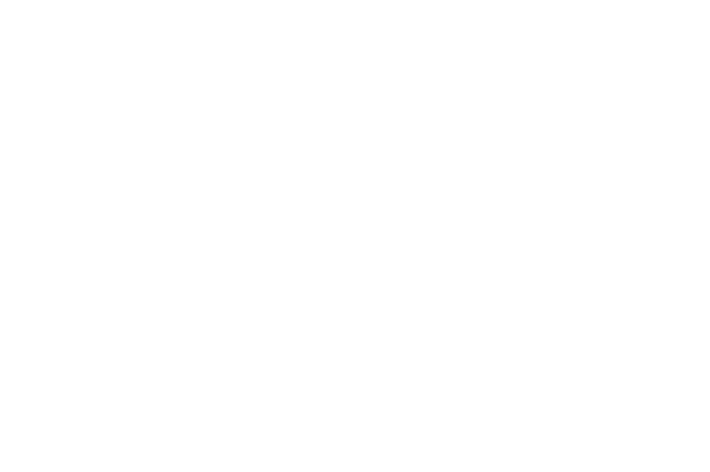 Nominated BEST DIRECTOR - THE BRIGHTSIDE TAVERN SHORTS FEST  - 2017-2.png