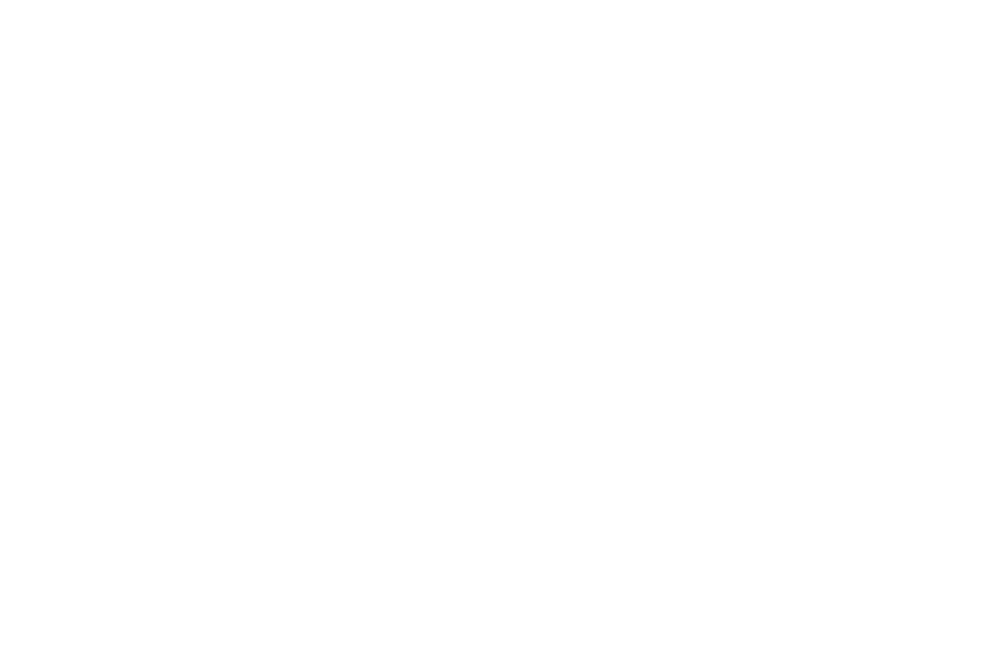 Nominated BEST DEBUT DIRECTOR - TOXFF - TOXIC FILM FESTIVAL - 2017-2.png