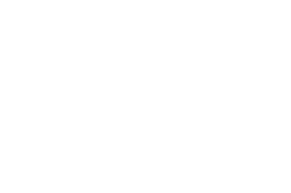 FINALIST - TOXFF - Toxic Film Festival - 2017-2.png