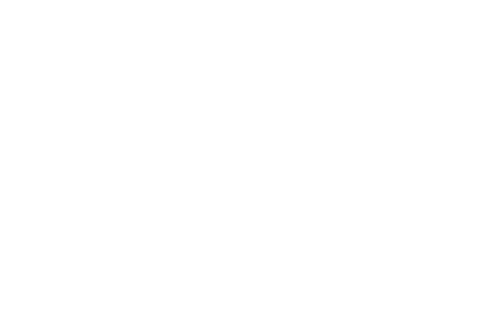 OFFICIAL SELECTION - HANG ONTO YOUR SHORTS FILM FESTIVAL - 2017-2.png