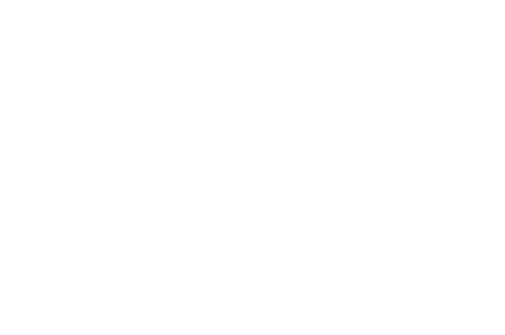 BEST HORROR FILM - LAIFFA - 2017.png