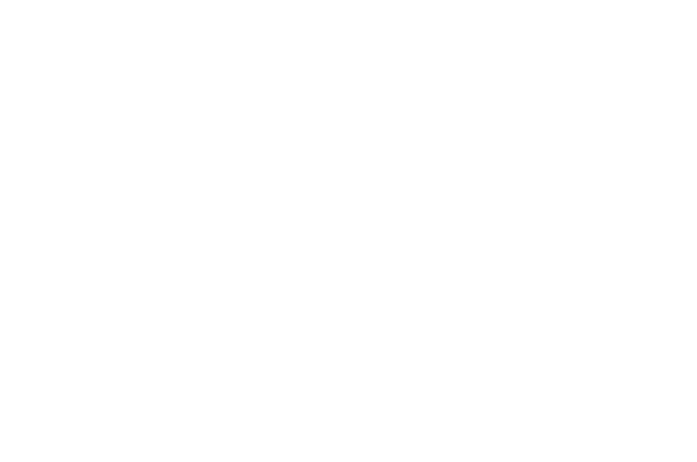 BEST DEBUT DIRECTOR TOXIC FILM FESTIVAL