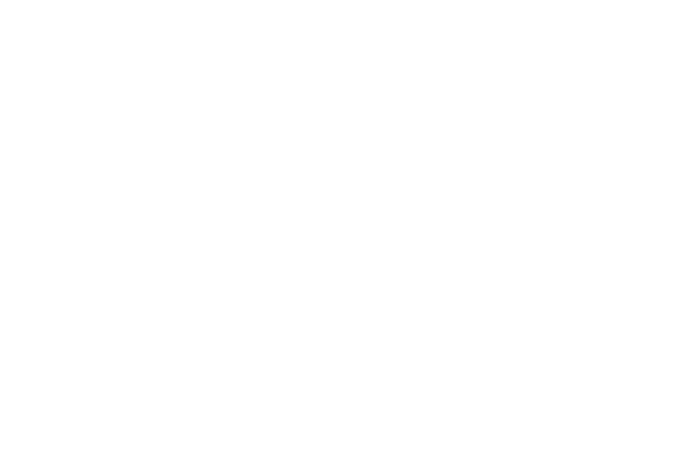 FINALIST - IndustryBOOST Competition - 2017.png