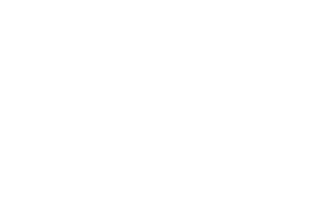 OFFICIAL SELECTION - BARCELONA PLANET FILM FESTIVAL - 2016-3.png