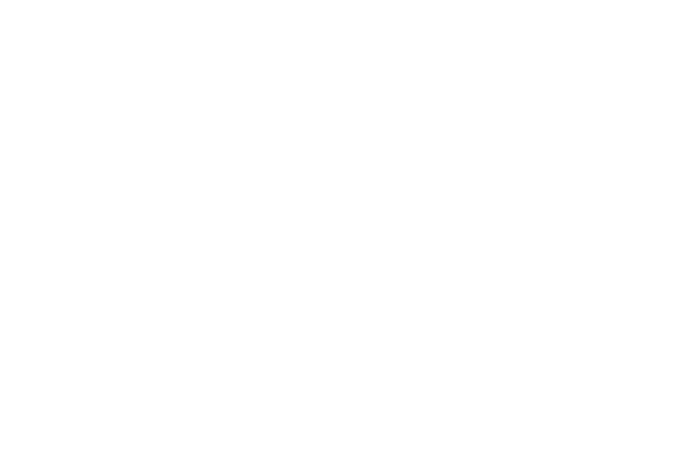 AWARD WINNING - BEST FILM - 2018-2.png