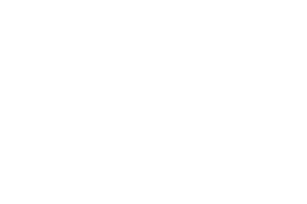 AWARD WINNING - BEST INTERNATIONAL FILM - 2018.png