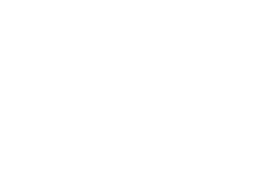 AWARD WINNING - BEST FILM - 2017.png