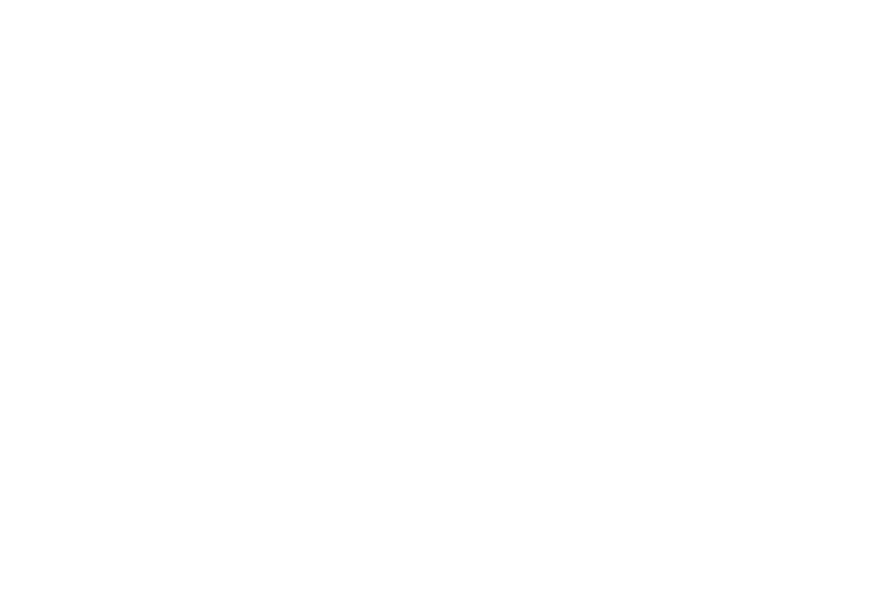 AWARD WINNING - BEST DIRECTOR - 2017.png