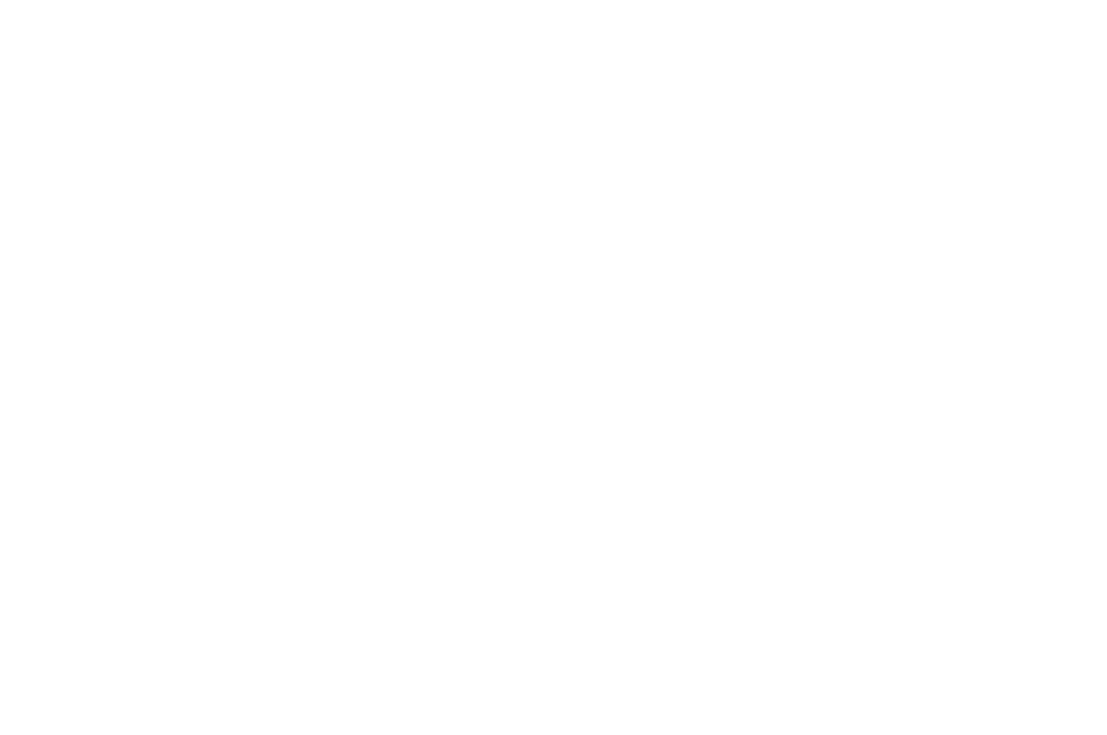 AWARD WINNING - BEST SOUND DESIGN - 2017-2.png