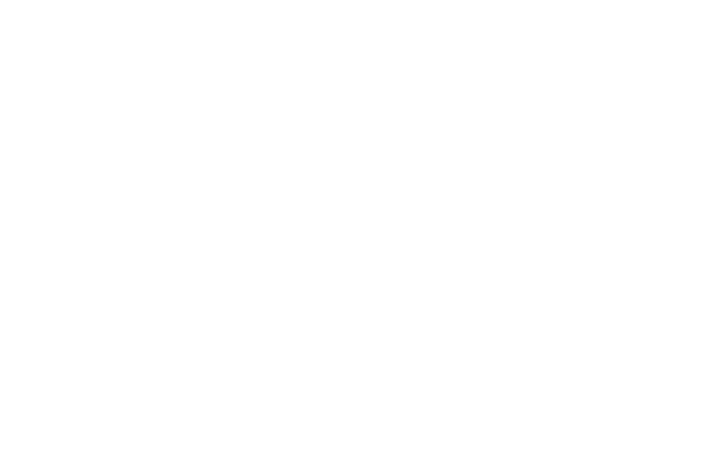AWARD NOMINATED - BEST TRAILER - 2017.png
