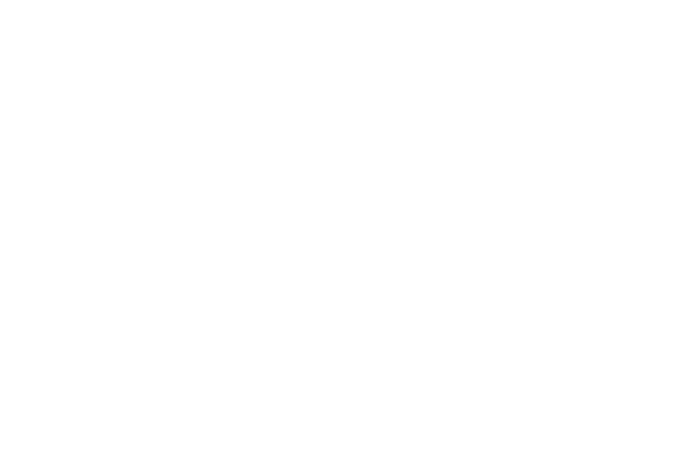 AWARD NOMINATED - BEST ACTRESS - 2017.png