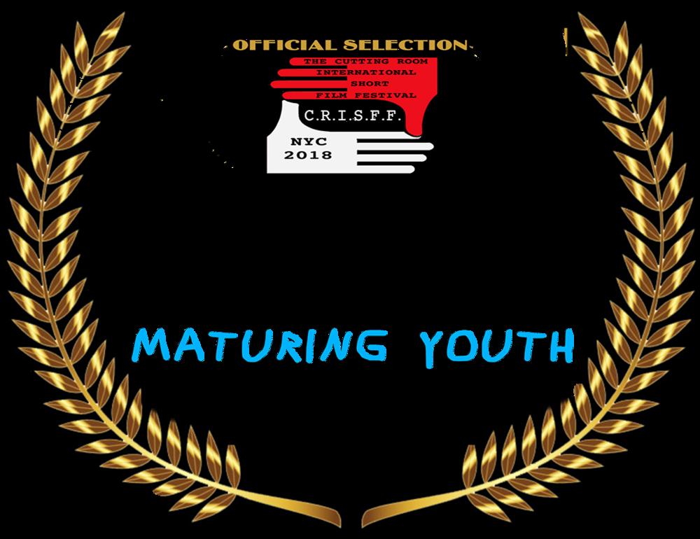 CRISFF LAURE custom nominations - best film.png