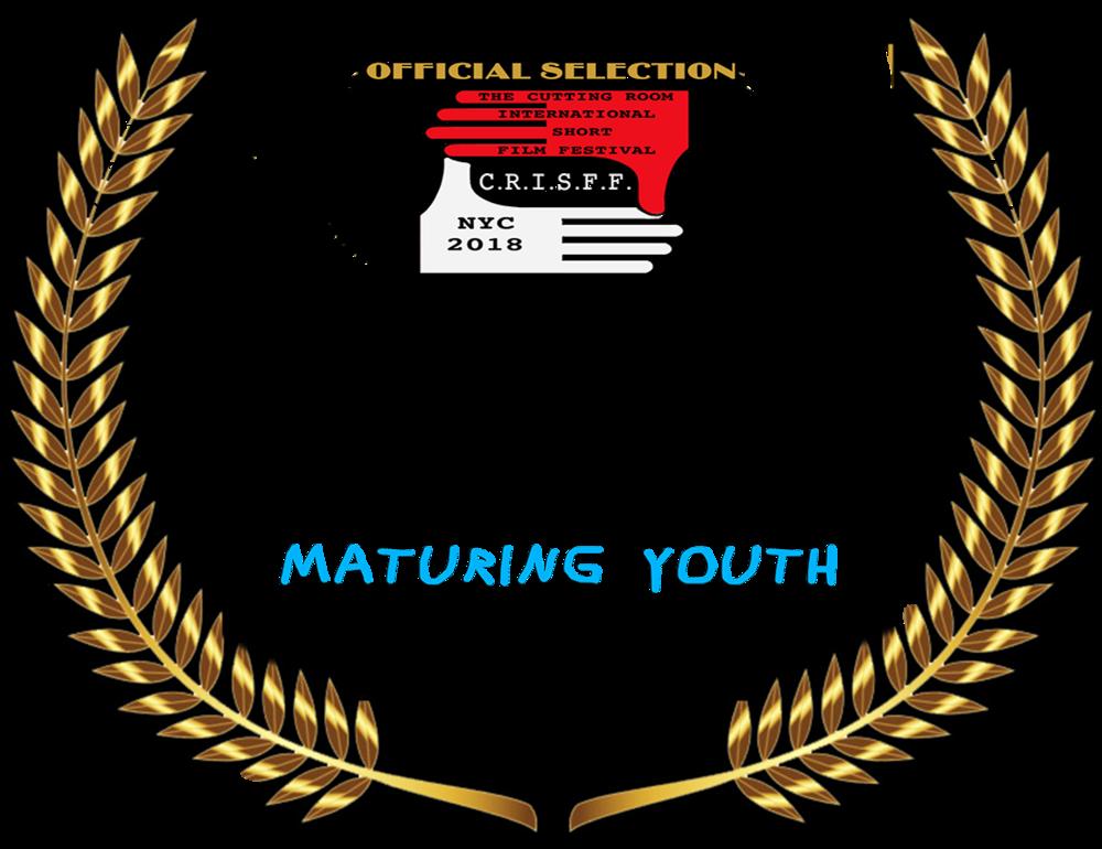 CRISFF LAURE custom nominations - best director.png