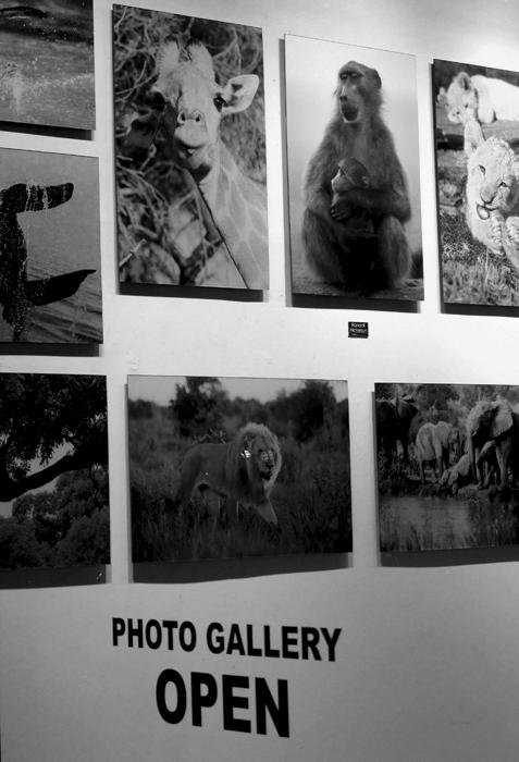 IMG_4338 Gallery NYC.jpg