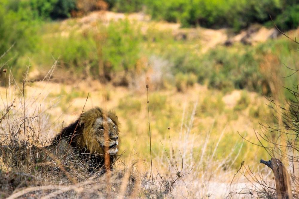 7D_SouthAfrica_2013_JKeefe-4568.jpg