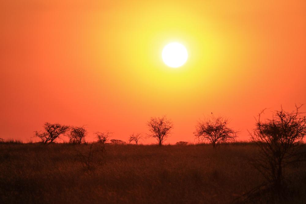 7D_SouthAfrica_2013_JKeefe-4714_1000px72dpi.jpg