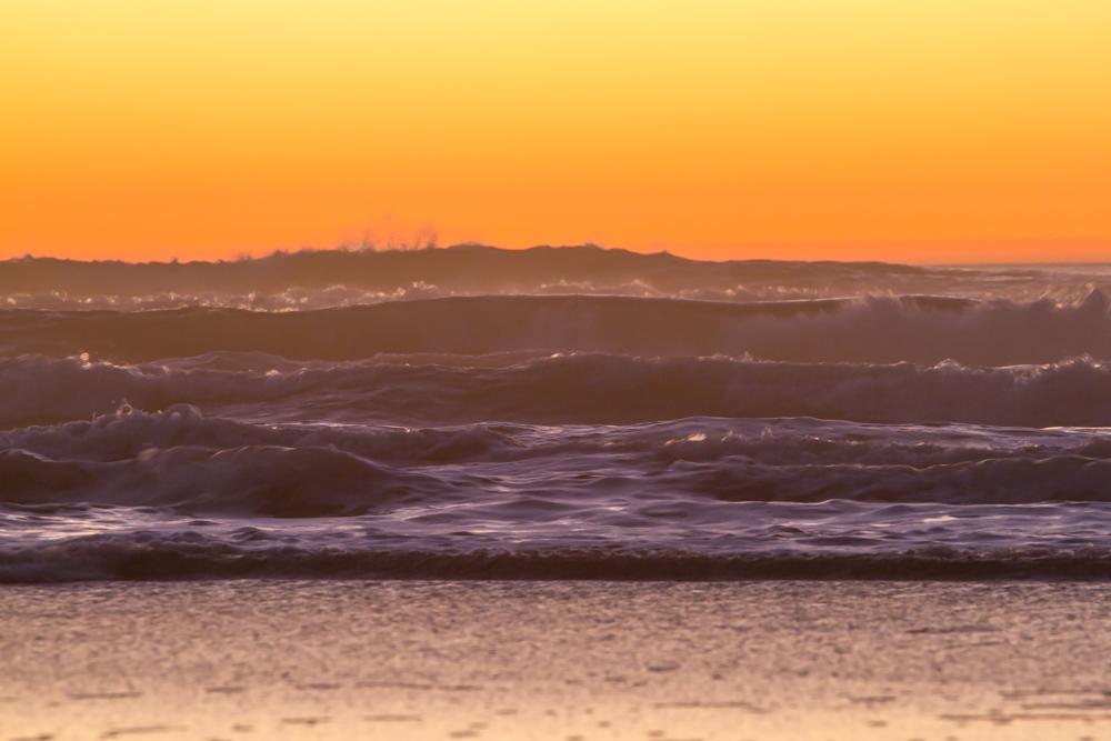 OBSF_Sunset_160207_JKeefe_7D-0375_1000px72dpi.jpg