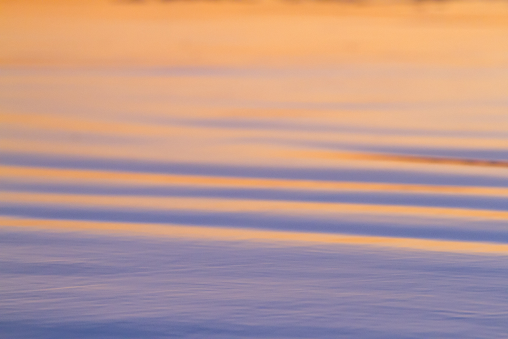 OBSF_Sunset_160207_JKeefe_7D-0456_1000px72dpi.jpg