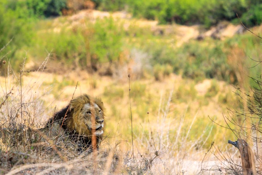 7D_SouthAfrica_2013_JKeefe-4568_1000px72dpi.jpg