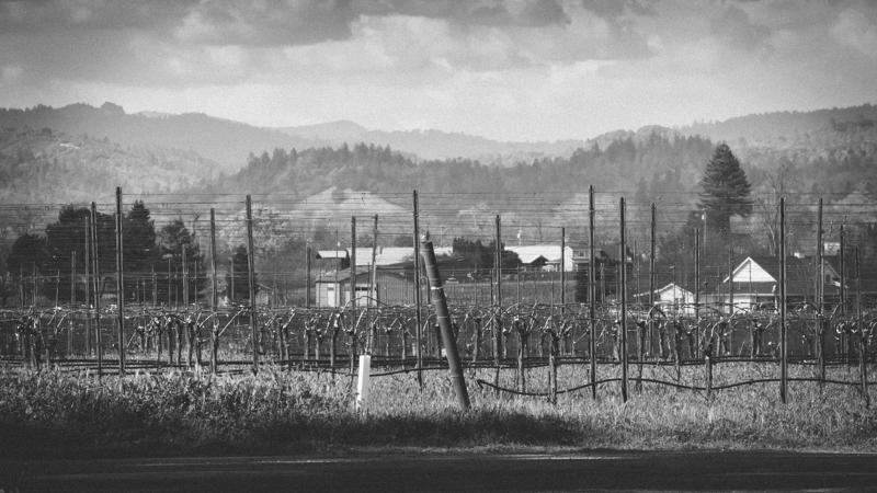 WineCountry_030215_Healdsburg_JKeefe_7D-3835.jpg