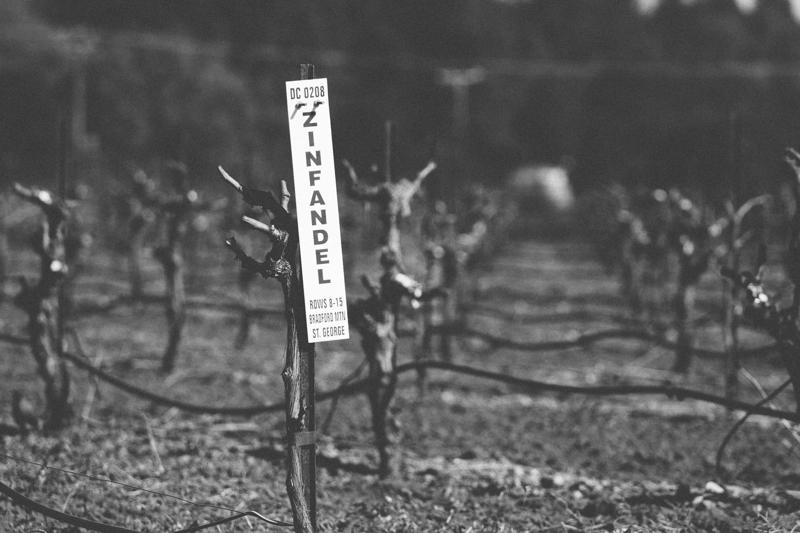 WineCountry_030215_Healdsburg_JKeefe_7D-3866.jpg