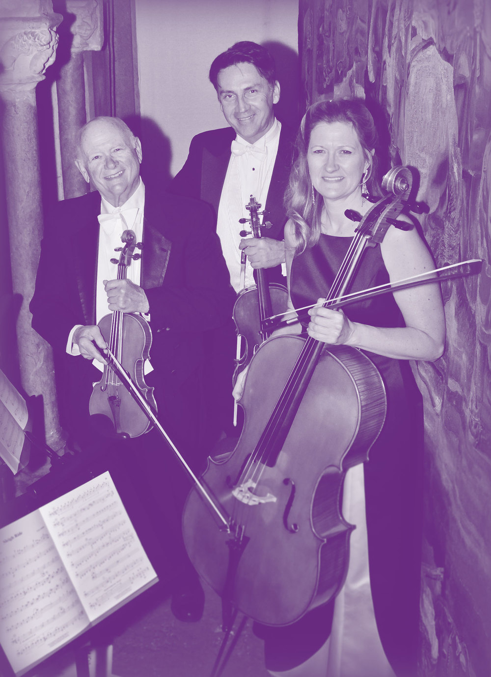 hearst-trio-violin-cello-strings-purple.jpg